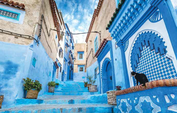 Mavi Şehir...