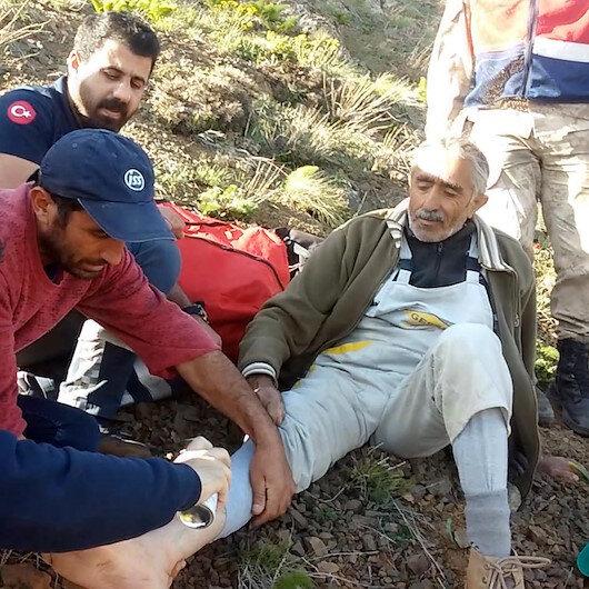 Mantar toplarken canından oluyordu: Önce kurtarıldı sonra ceza yedi