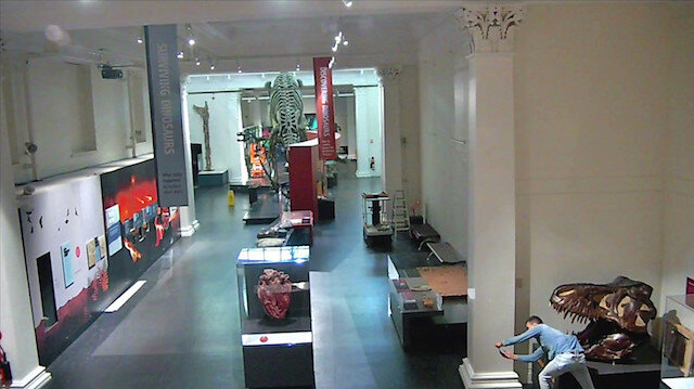 A man (bottom right) is seen taking a selfie picture with a dinosaur exhibit in the closed Australian Museum in Sydney, Australia, May 10, 2020, in this still image obtained from CCTV footage released by New South Wales Police.