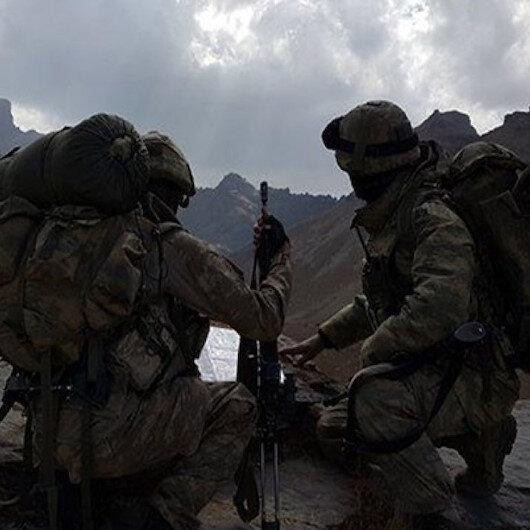 Bitlis Sehi Ormanlarında operasyon: 3 terörist etkisiz hale getirildi