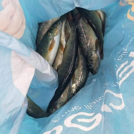 Kırklareli'de dereye elektrik akımı vererek balık avlayan kişiye 10 bin lira ceza