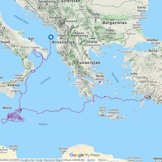 Caretta caretta'yı uydudan izlediler: 5 bin 500 kilometre yol aldı