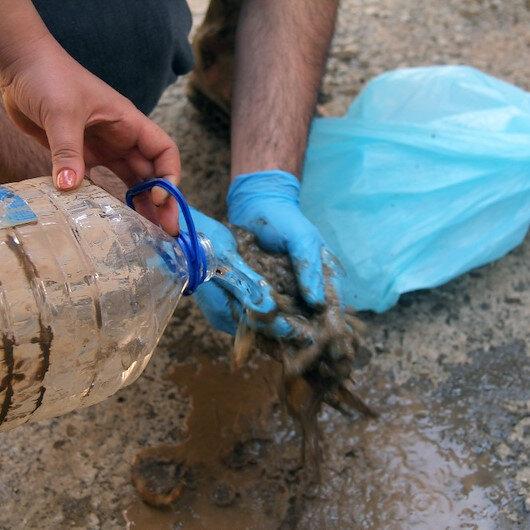 Sel felaketini vurduğu Giresun'da paralarını çamur içerisinde buldular: Kurtarmak için suyla yıkadılar