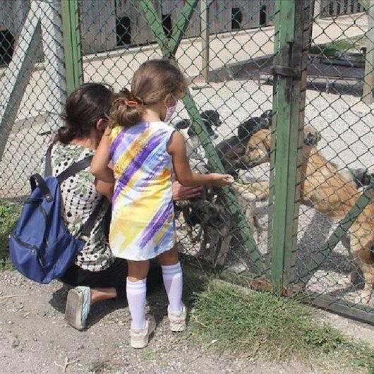 بفضل وسائل التواصل التركية.. حياة جديدة لحيوانات أليفة
