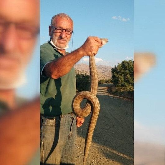 Erzincanlı vatandaş kendisine saldıran engerek yılanını boğazından yakalayıp poz verdi
