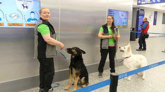 Sniffer dogs Valo (L) and E.T., being trained to detect the coronavirus from the arriving passengers' samples, are seen in Helsinki Airport in Vantaa, Finland September 22, 2020.