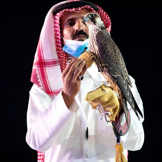 Falcon sells for record-breaking $170,000 in Saudi Arabia