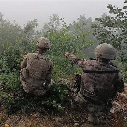 تحييد 4 إرهابيين في عملية أمنية جنوبي تركيا