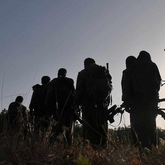 Terör örgütü PKK'nın sözde tim komutanı ikna sonucu teslim oldu