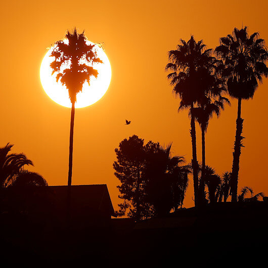 Global warming at 'boiling point', warns expert