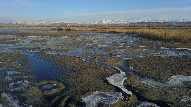 """بحلول الشتاء.. بحيرة """"وان"""" التركية تستضيف الطيور المهاجرة"""