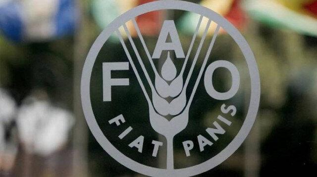 """""""فاو"""" تنظم 48 دورة تدريبية للسوريين في 10 ولايات تركية"""