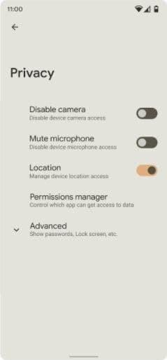Bu yeni seçenekler Android 12'deki Gizlilik seçenekleri altında listeleniyor.