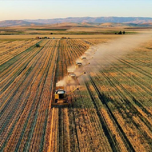 Turkey's growth in agriculture posts 3-year high