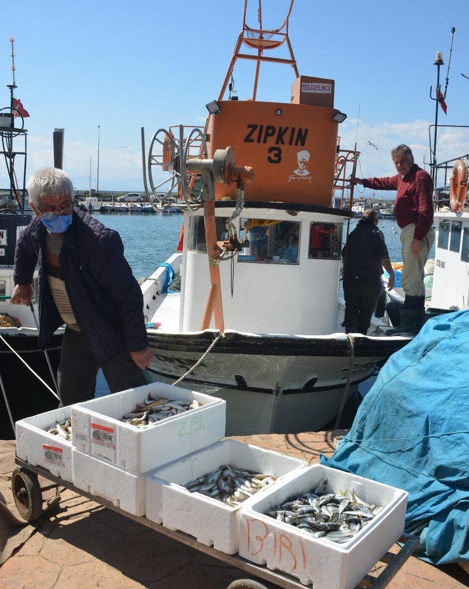 Küçük teknelerde avlanan balıklar vatandaş için satışa sunuluyor
