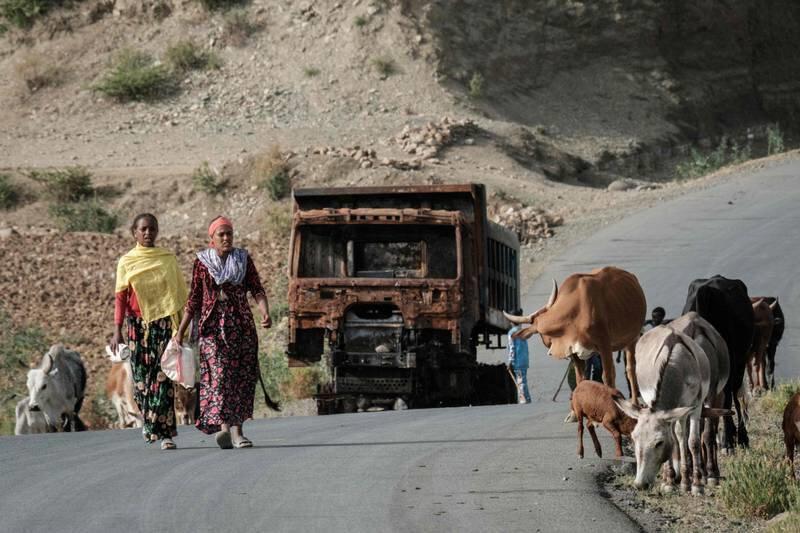 Ülkedeki büyük ve küçük baş hayvanların da yüzde 15'inin yağmalandığı belirtildi.