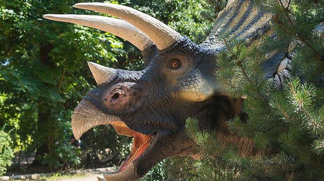 اكتشاف حفرية نادرة لصغير ديناصور شمالي الصين