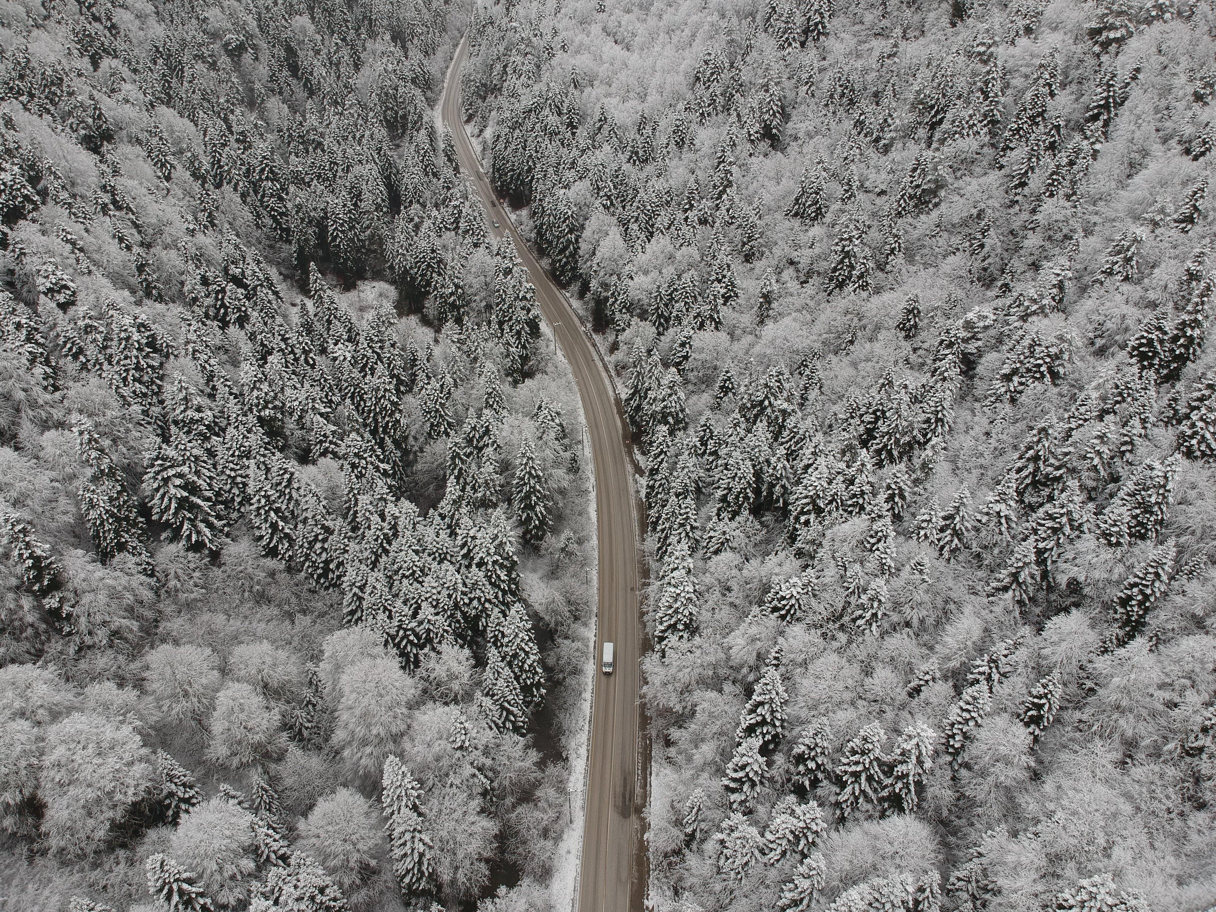 Snow turns cities into winter wonderland in Turkey