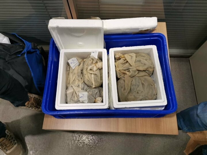 Passenger tries to smuggle over 3,000 live leeches in suitcase out of Turkey